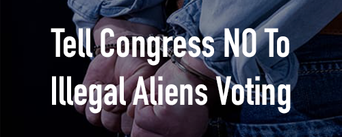 Help Us Stop Illegal Aliens from Voting!